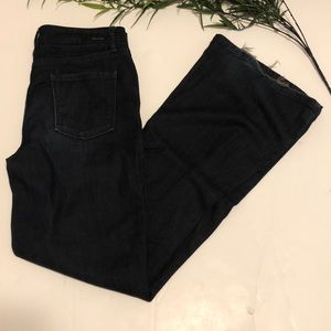 Level 99 Tanya Flare High Rise Trouser Jeans 27